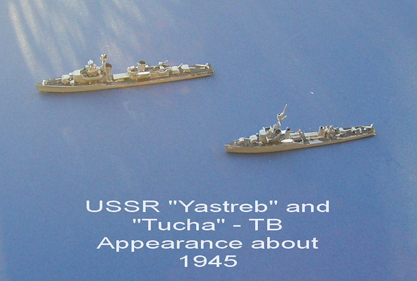Yastreb and Tucha-01.jpg