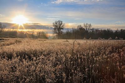 02_Long Branch Farm_Winter_2017