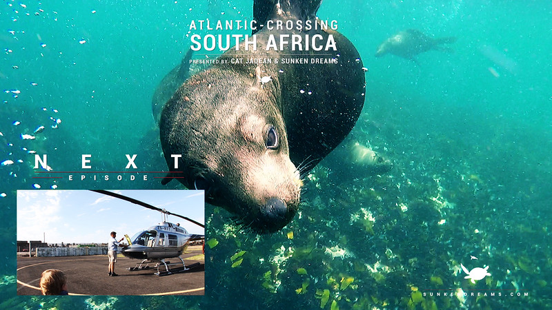 Atlantic Crossing Episode 2 - Cape Fur Seals - South Africa