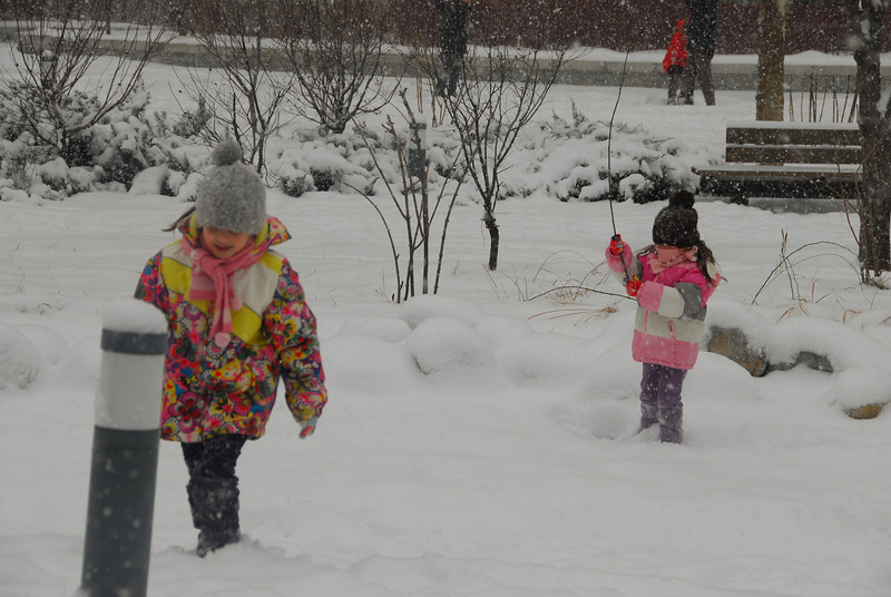[20100103] 1st 2010 Snow in Beijing (60).JPG