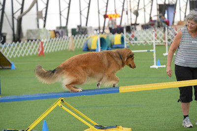 Lancaster Kennel Club AKC Agility Trial September 26-27