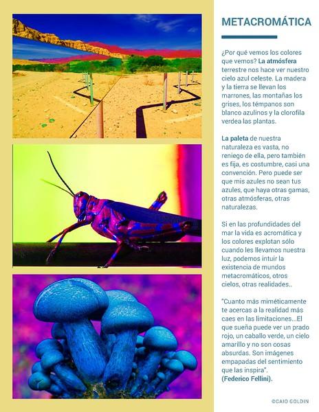 catálogo-CURSO-fotográfico-Caio-Goldin-fotógrafo-Buenos-Aires-Argentina-comprimido_Pagina_11.jpg
