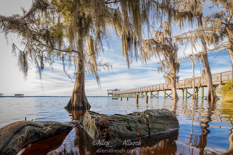Low-Angle View of St. Johns River