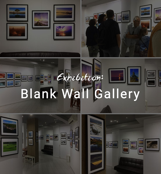 Exhibition : Blank Wall Gallery
