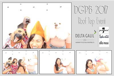 06.28.17 DGPB 2017 Roof Top Event