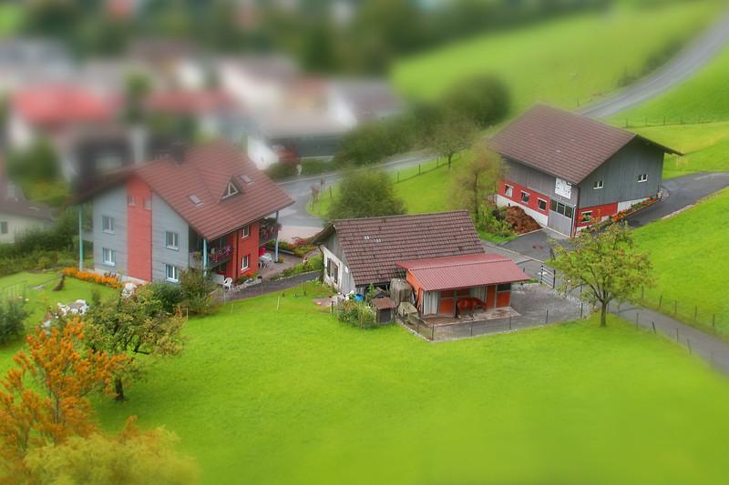 Little Swiss Farm