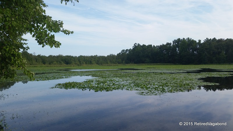 Little Pee Dee State Park, South Carolina