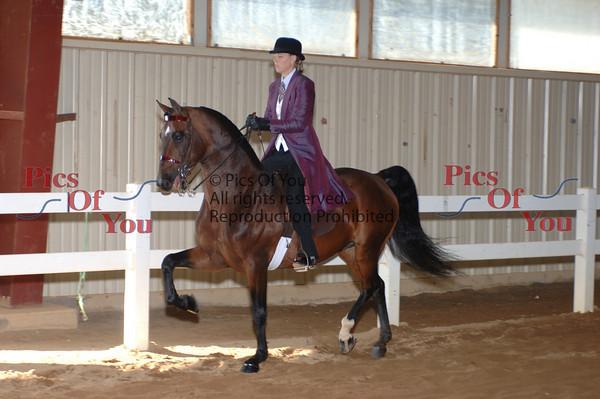 CLASS 054 Class Pleasure Saddle Open