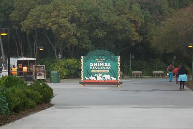 2014 Animal Kingdom
