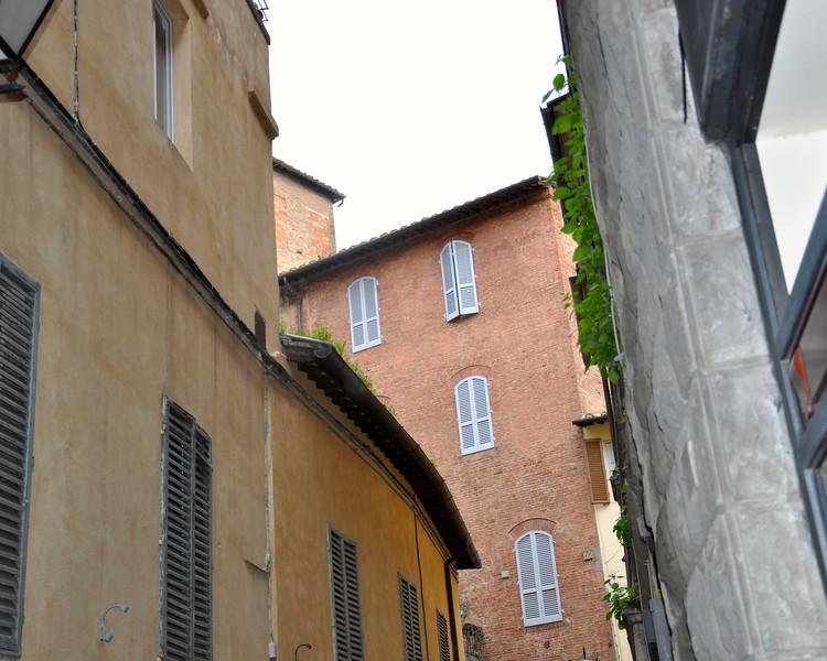 Siena 2013 - 007.jpg