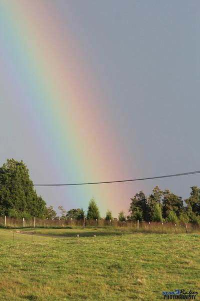 2013 Rainbow