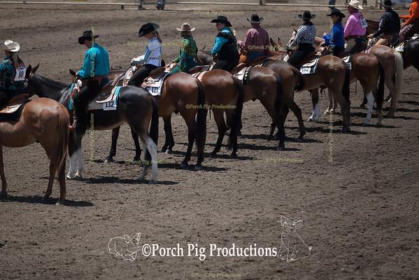 8. Bridled Western Pleasure