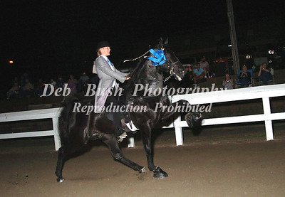 CLASS 25   OPEN AMATEUR SPECIALTY