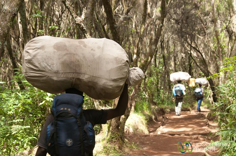 Porters Carry Gear on Head - Mt. Kilimanjaro, Tanzania