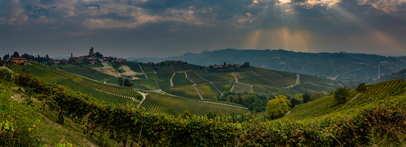 Langhe Hills Panorama