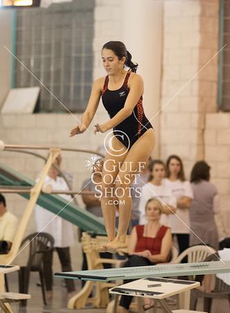 2012-01-24 Diving Swimming SJS