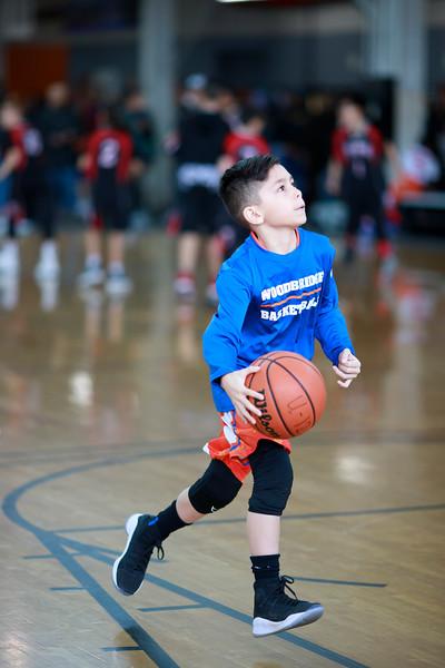 Woodbridge Basketball