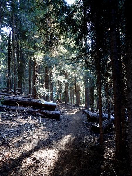 Aspen Butte Mountain Lakes Wilderness Oregon