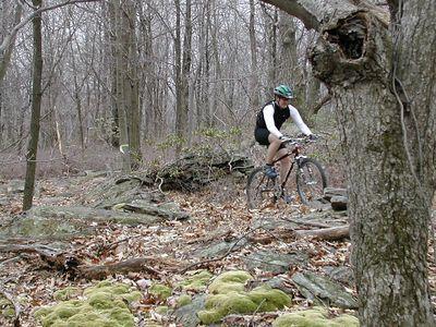 Rocks Ridge Trail East