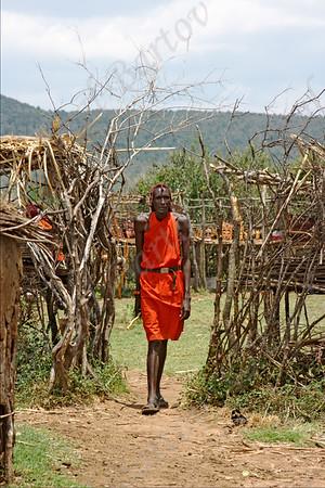 Samburu tribe - Kenya שבט סמבורו -  צפון קניה