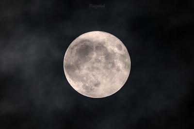 2016-11-14 - Mszczonów - Pełnia superksiężyca