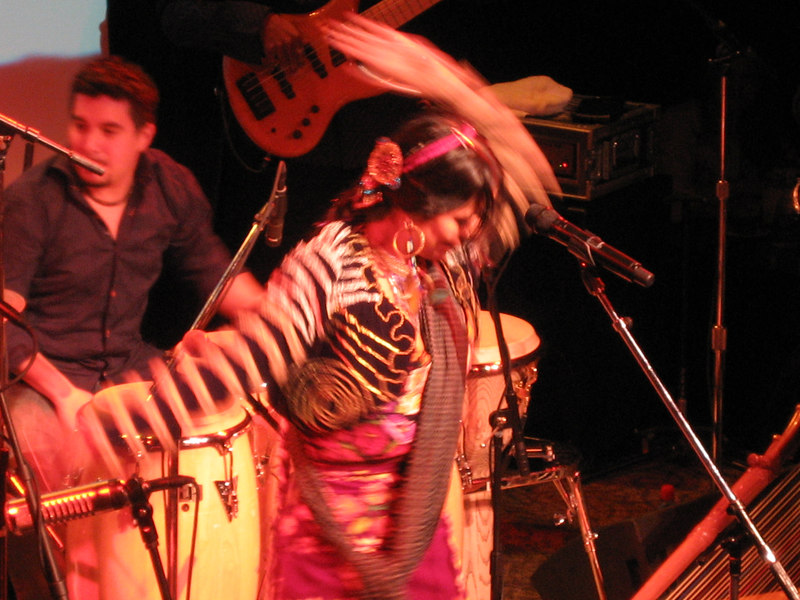 Lila Downs Seattle Mar 07 011.jpg