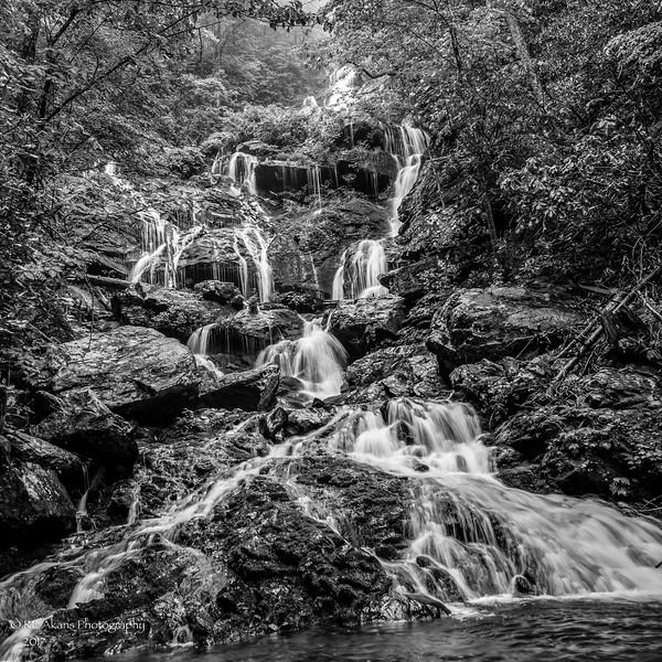 Catawba Falls 9380 BW.jpg
