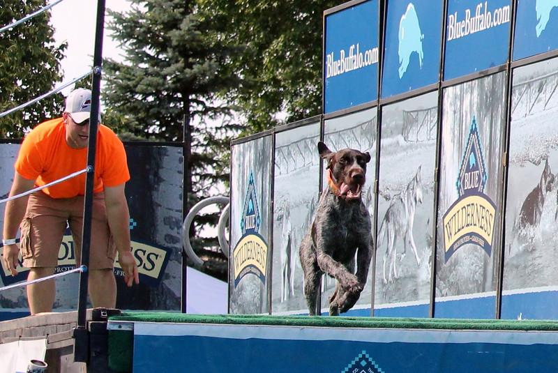 2015.8.6 Winnebago County Fair Dock Dogs (93).JPG
