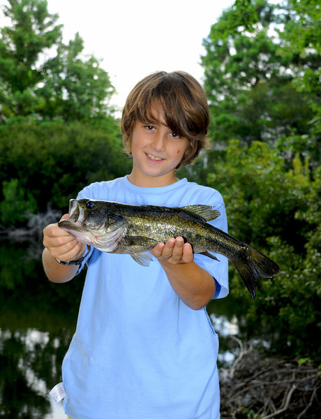 2031 Largemouth Bass 2 July 2009.jpg