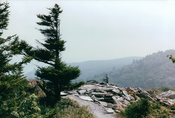 Monongehela National Forest, WV
