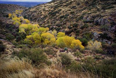 Mount Graham 2013/12/20