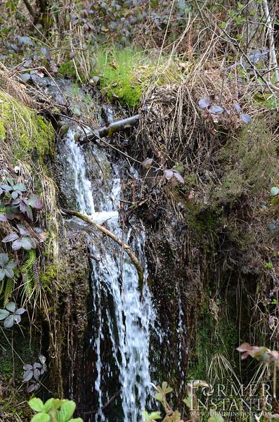Creekfall