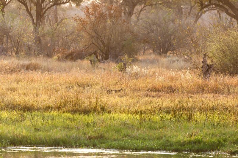 Botswana_0818_PSokol-1763.jpg