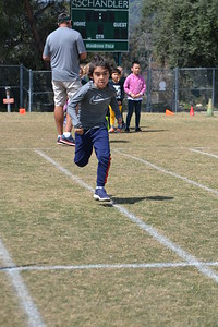 Chandler Sports-a-Thon Takes Off