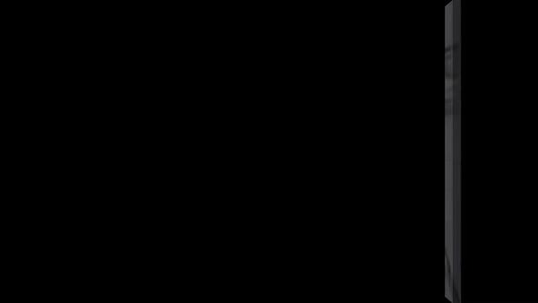 ANNS 2014