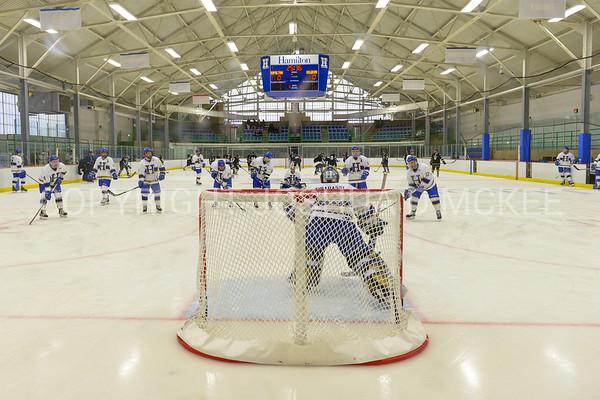 Men's Hockey v Bowdoin 2-3-18