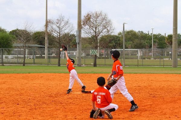 2012 Machine Pitch Marlins