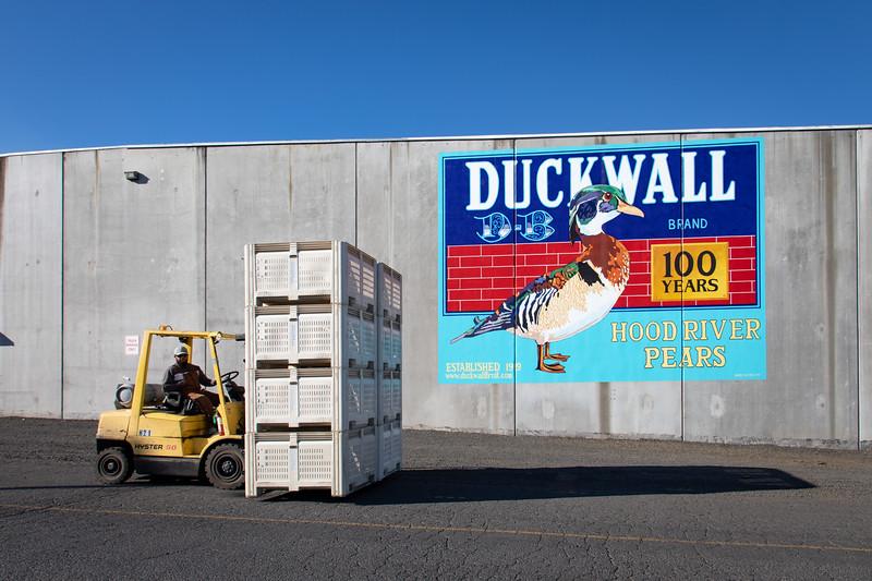 Duckwall20-1002.jpg