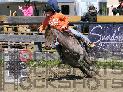 Northern Lights Horse Show