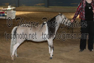 Hoosier Horse Park 5 22 2011