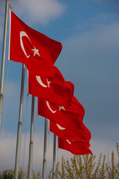 Turkey-3-30-08-31879.jpg