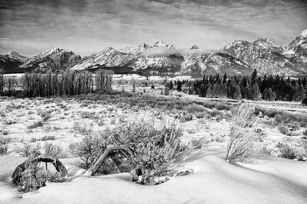 Grand Teton NP Winter WY