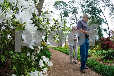 4/12/15 Rose Garden Walk by Andrew D. Brosig