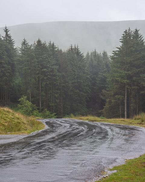 Blaen-y-glyn forest