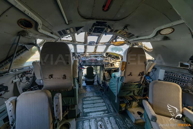 787A0804.jpg