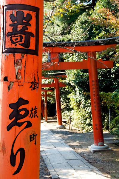 Japan_2010_NAT0347.jpg