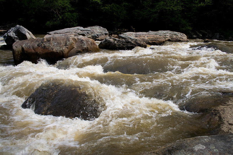 0705_Swallow Falls State Park_015.jpg