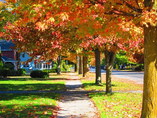 Fall in Leelanau County