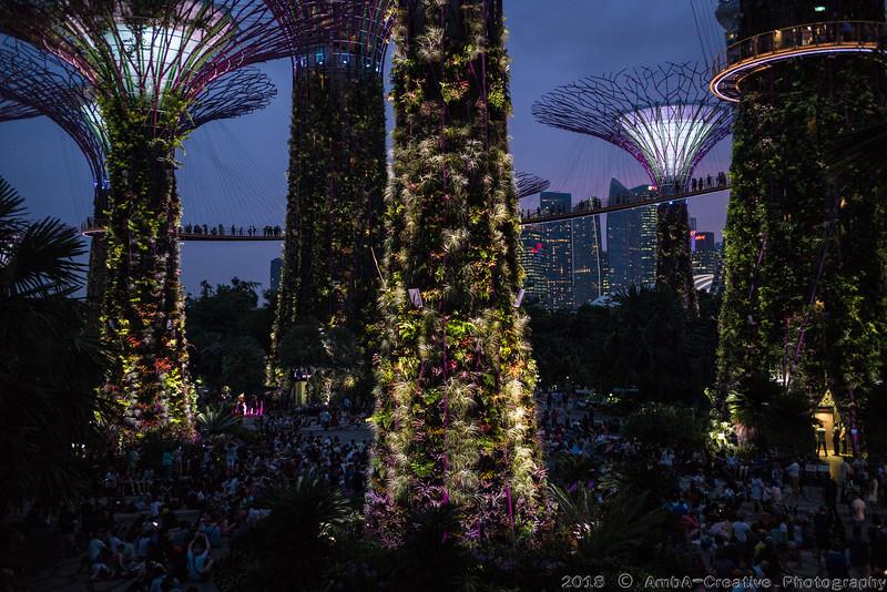 2018-07-18_FunWithFamily@GardensByTheBay_SingaporeSG_58.JPG