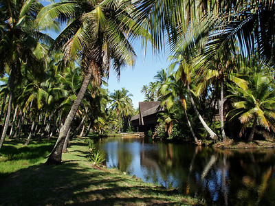Coco Palms Resort Hotel Kauai